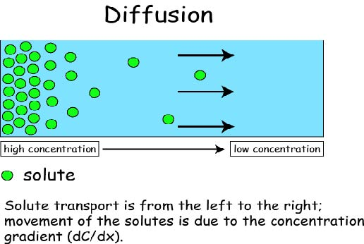 Diffusion is the movement of particles from high concentration to low concentration with the concentration gradient.